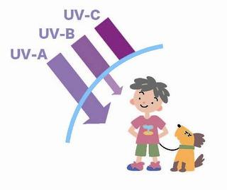 「紫外線の場合」の画像検索結果