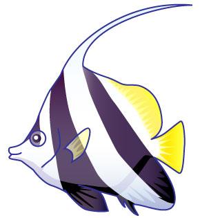 すべての講義 お魚の絵 : 魚 イラストの画像