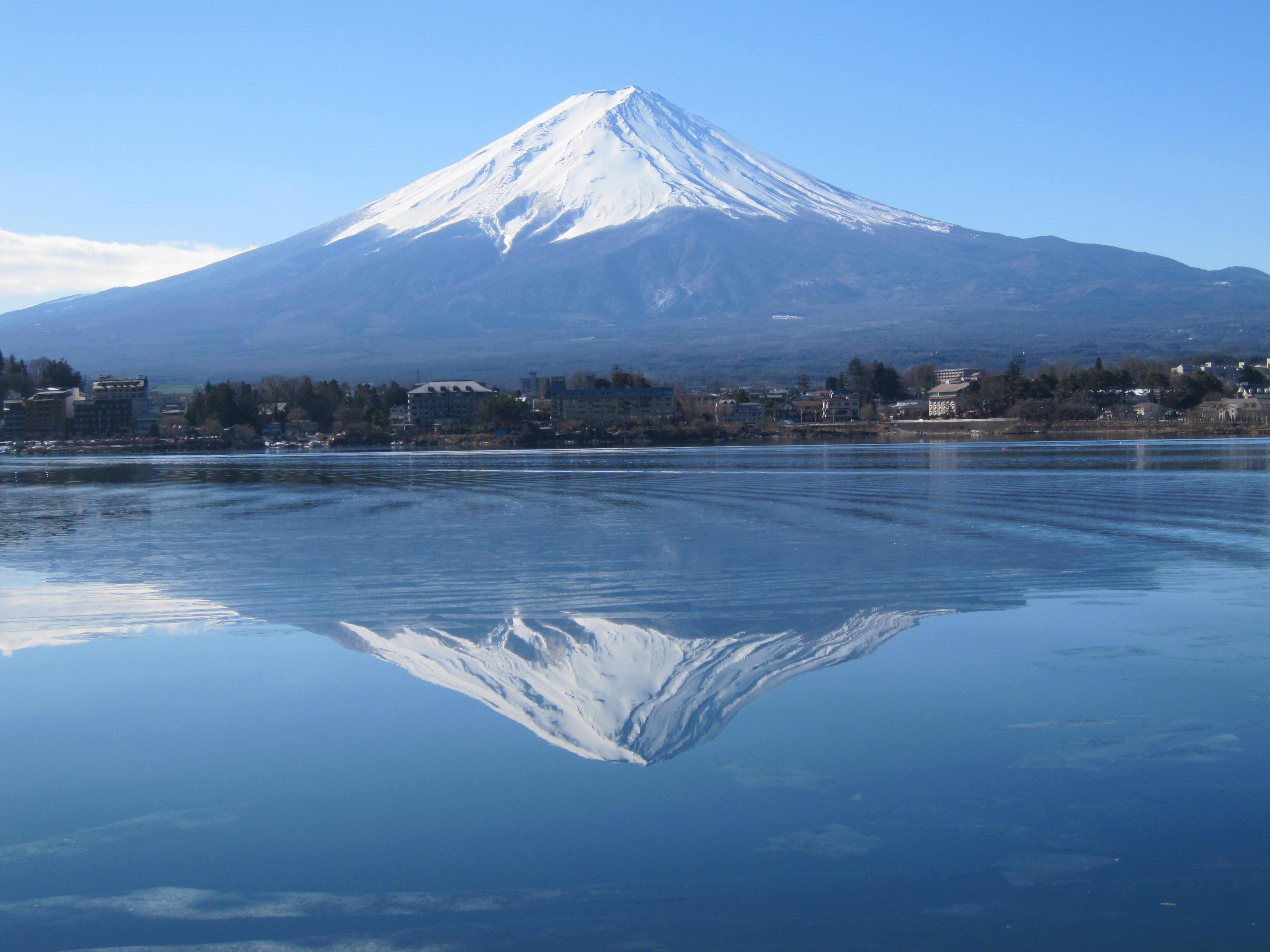 【皇室】紀子さま、お茶の水女子大学の特別招聘研究員に就任される©2ch.net->画像>131枚