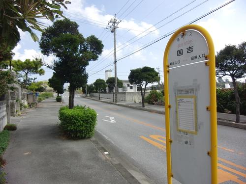 県道250号線、国吉のバス停